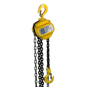 0.5 Ton X 10 Foot Lift, Tyler Tool Chain Hoist