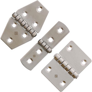 Type 304 Stainless Hinges