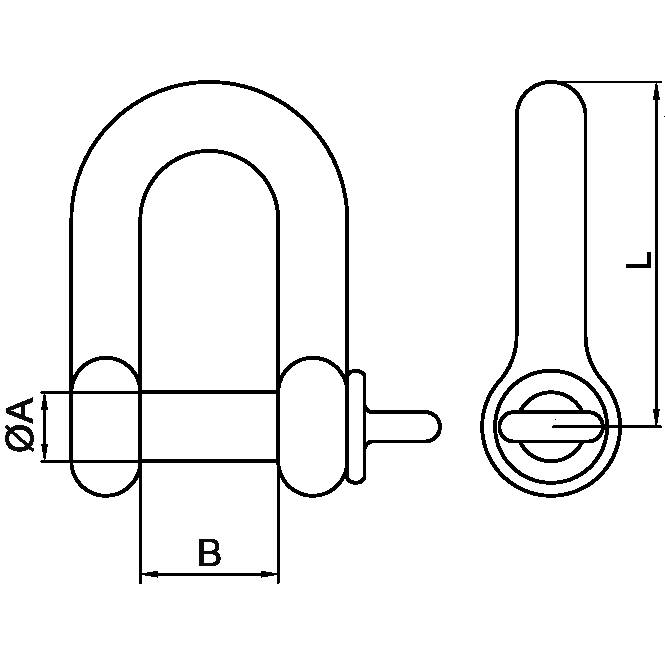 1-2-Stainless-D-Shackle